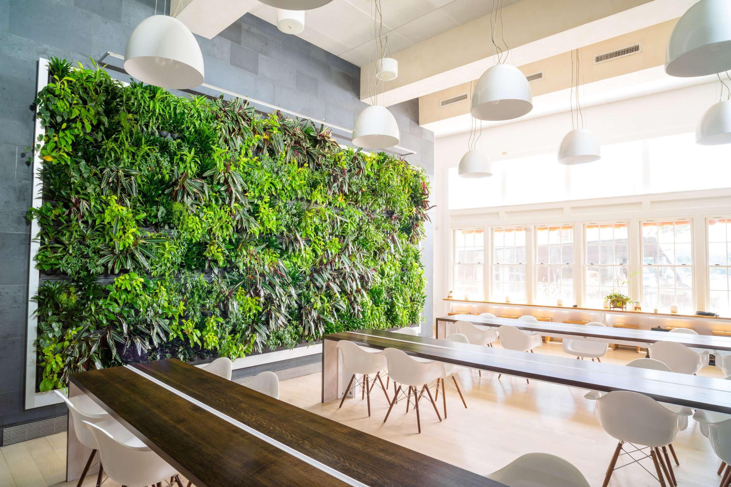 groen biofilie kantoor dutchgraph